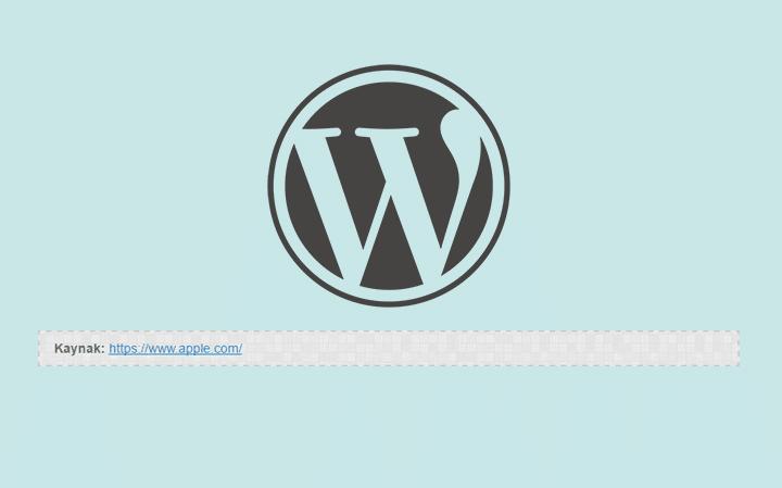 """WordPress Yazılarınıza Ekleyebileceğiniz """"Kaynak Bölümü"""" Eklentisi Yapımı"""