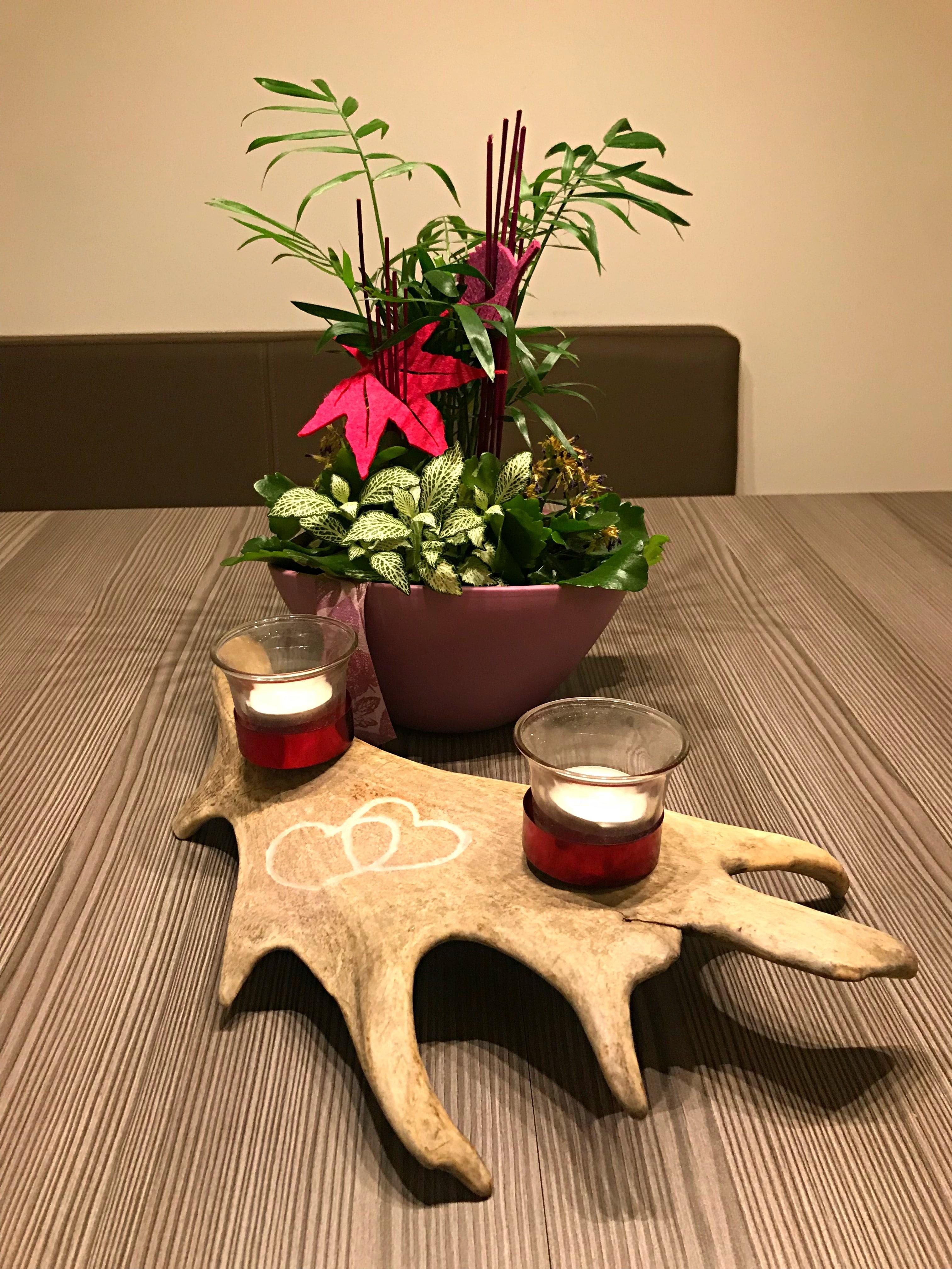 Teelichthalter, Geweih Deko, Hirschgeweih Deko, Damhirsch, Einrichtung, modern, personalisiertes Geschenk, Geschenk für Jäger