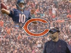 Bears Graphic