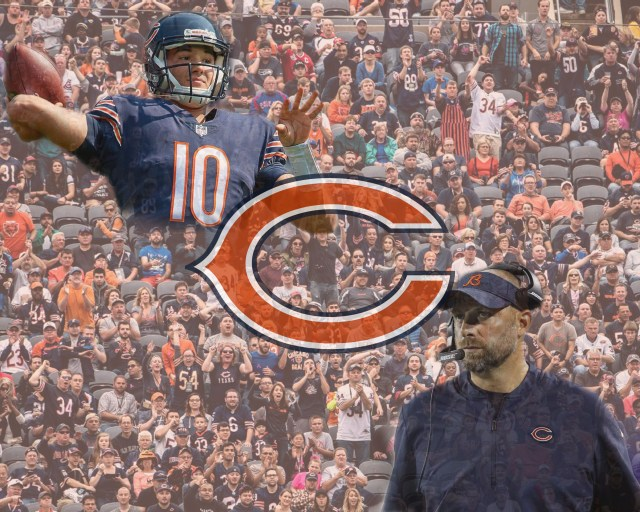 Bears Graphic