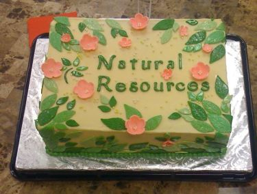 Natural Resources Cake 42- Oh 4 Goodness Cakes - specialty cakes - pastries - rolls - pies - cookies - bread