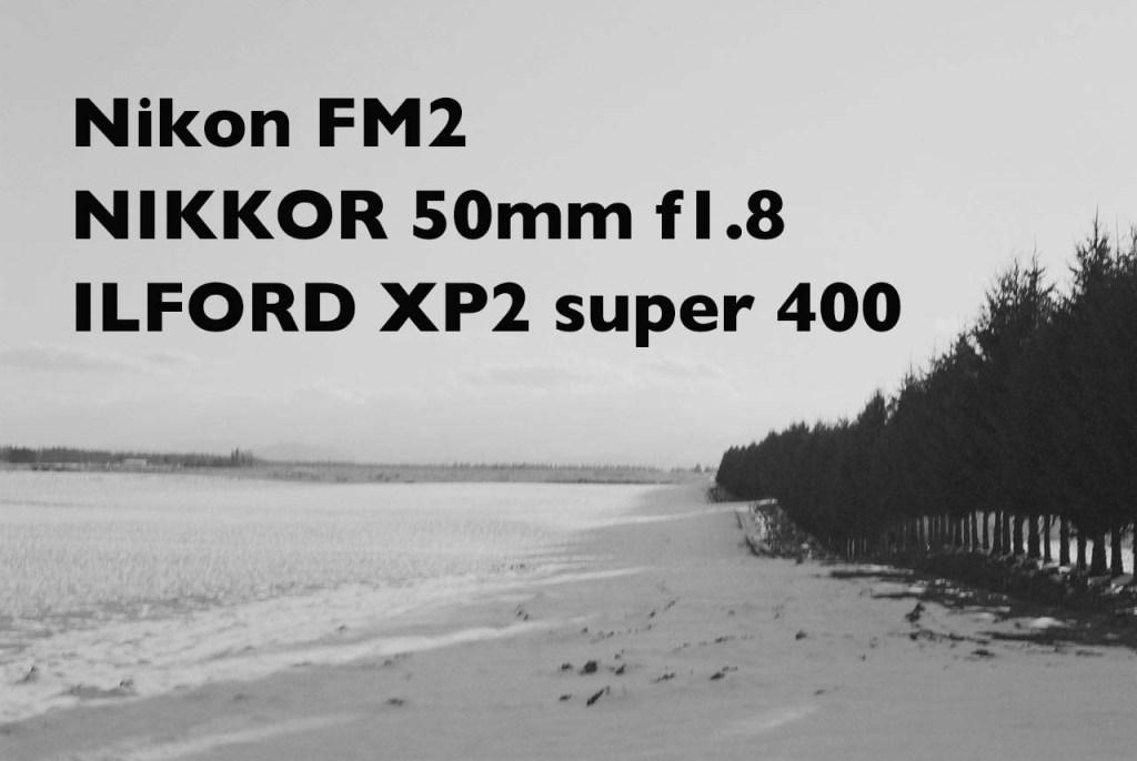 Nikon FM2 と NIKKOR 50mm f1.8 、ILFORD XP2 super 400 の作例