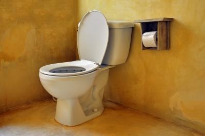 Potty Training Public Bathroom