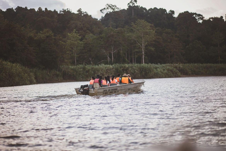 Kinabatangan River, Sabah, Borneo