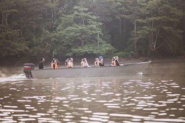 På spaning efter djurliv längs Kinabatangan River