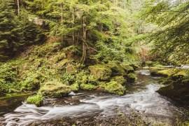 Bohemian Switzerland - en drömlik plats i Tjeckien