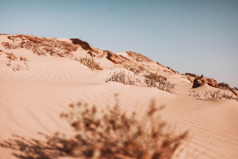 Att vandra i en öken som aldrig tar slut