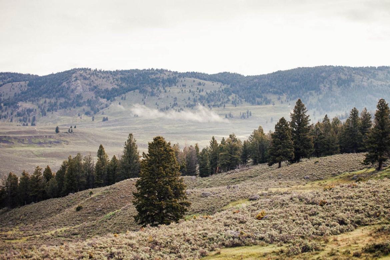 yellowstone-nationalpark-1