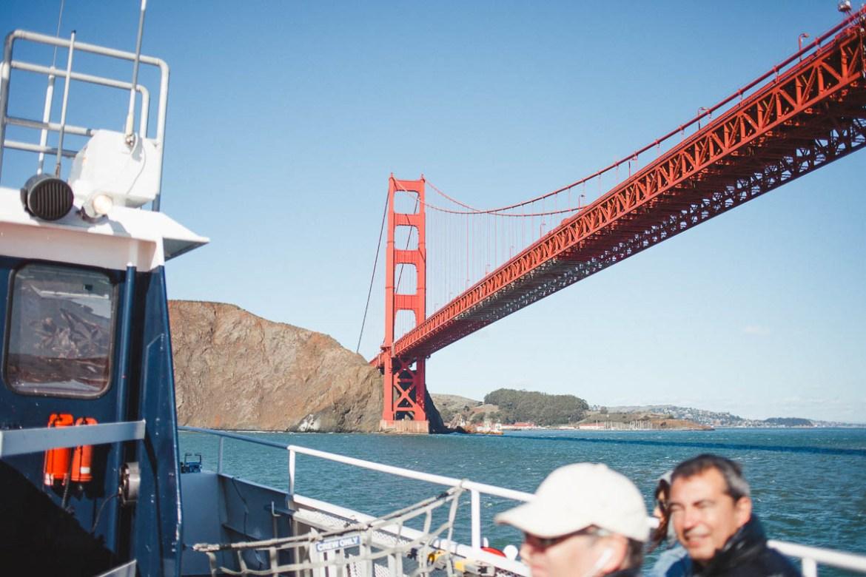 Bay Cruise - Blue & Gold Fleet