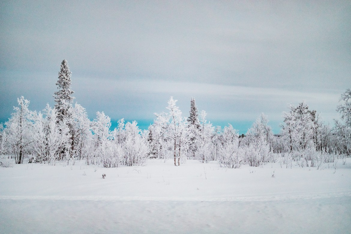 Winter in Kiruna //