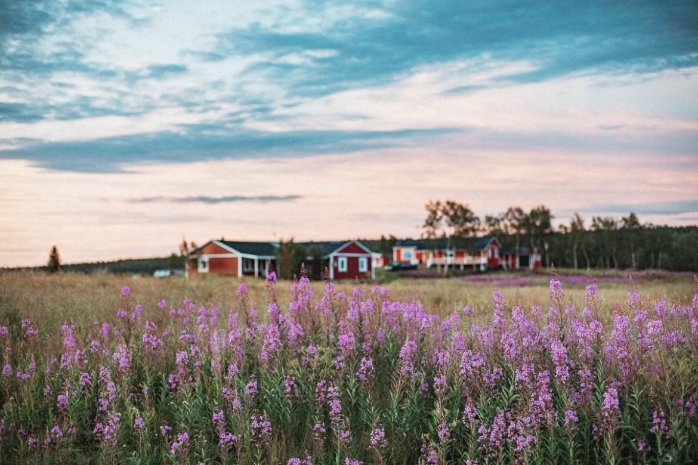 En sommar i Mertajärvi, nordligaste Lappland.