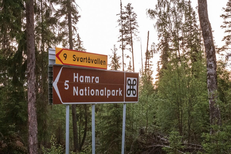 Hamra nationalpark i Dalarna