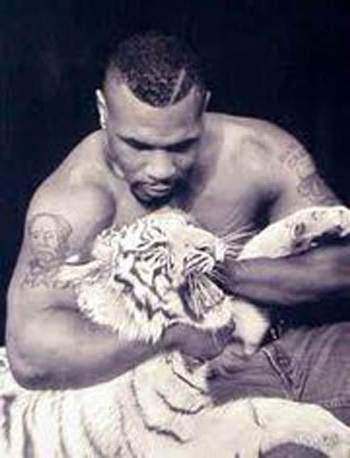 O tigre de estimação de Mike Tyson