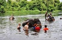 Zum Abschluss konnten wir dann auch selbst zu den Elefanten ins Wasser springen und mit ihnen baden
