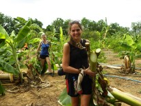 Da Elefanten zur Sorte Nimmersatt gehören, musste noch mehr Futter beschaffen werden - Bananenblätter. Natürlich haben wir dabei richtig mit angepackt.