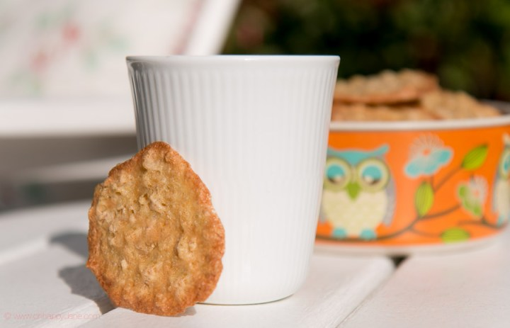 thin and crispy oatmeal cookie