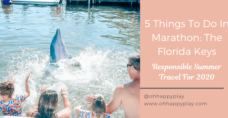 Things To Do In Marathon Florida, the dolphin research center review, Things to do in marathon, florida, family friendly things to do in marathon, family friendly places to visit in Florida, Safe places to visit in florida, the florida keys, key west, florida travel, marathon, new cases