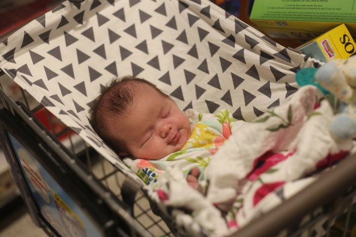 Cart Hammock by Bixby Baby