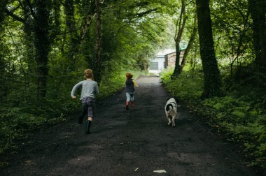 Dogs and children running free