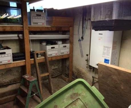 Waterproofed Basement with BasementGutter and a SafeDri in Bexley, OH