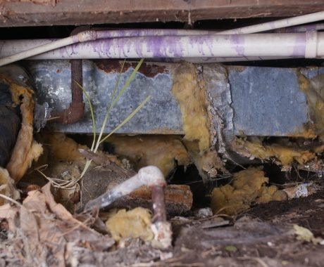 Cleaning Out Your Crawl Space: 10 Reasons to Get Started