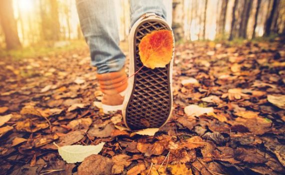 fall fitness 7 tips for staying active