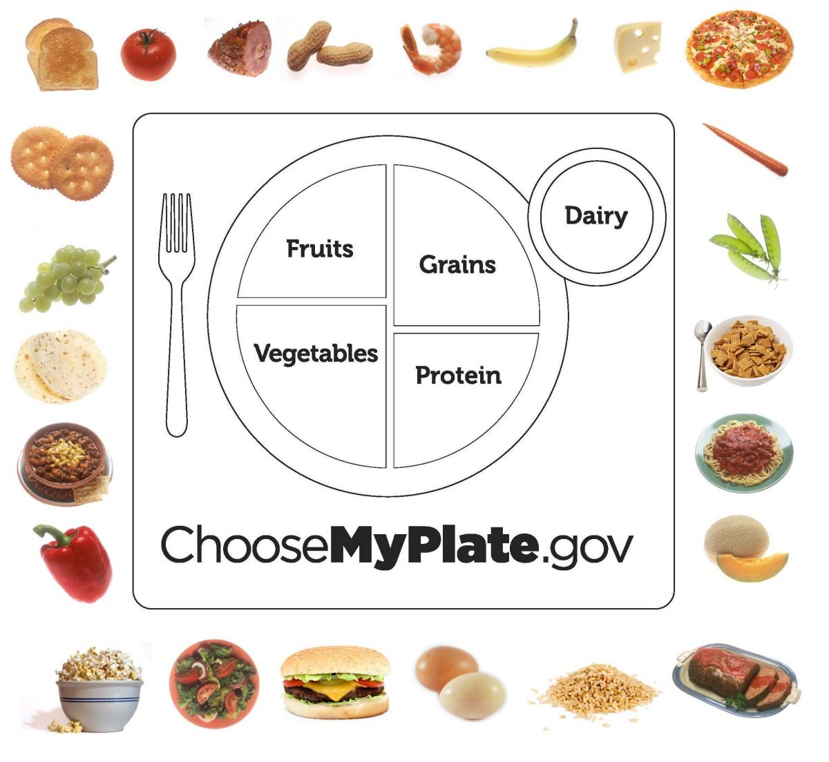 Choose My Plate Kids Games