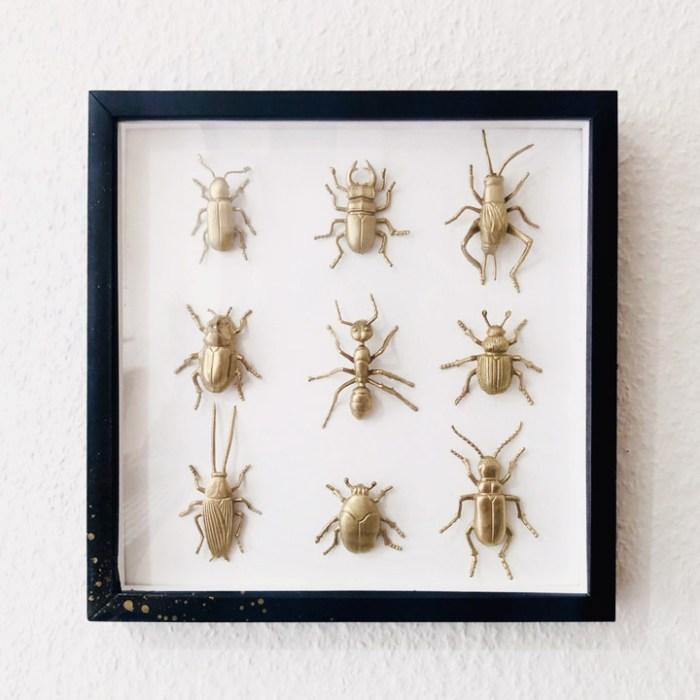 Cadre insectes plastique
