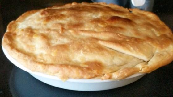 Leftover Turkey Recipe- turkey Pot Pie