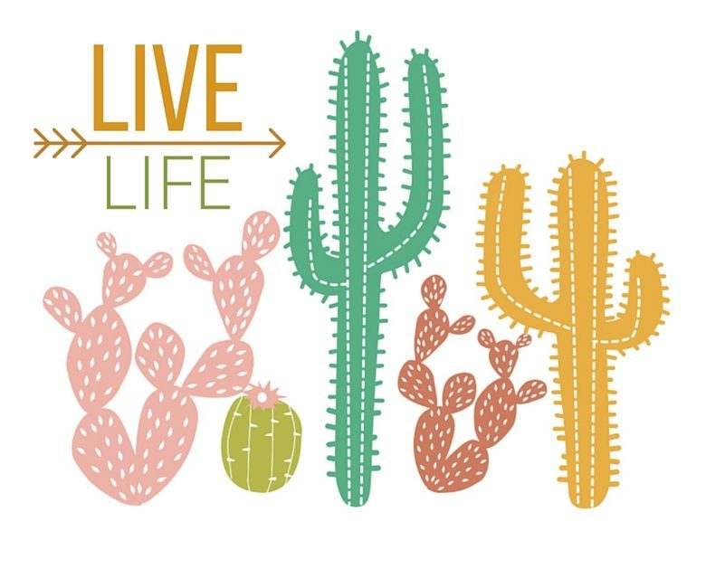 cactus wall art and stickers