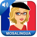 MosaLingua French vocabulary App