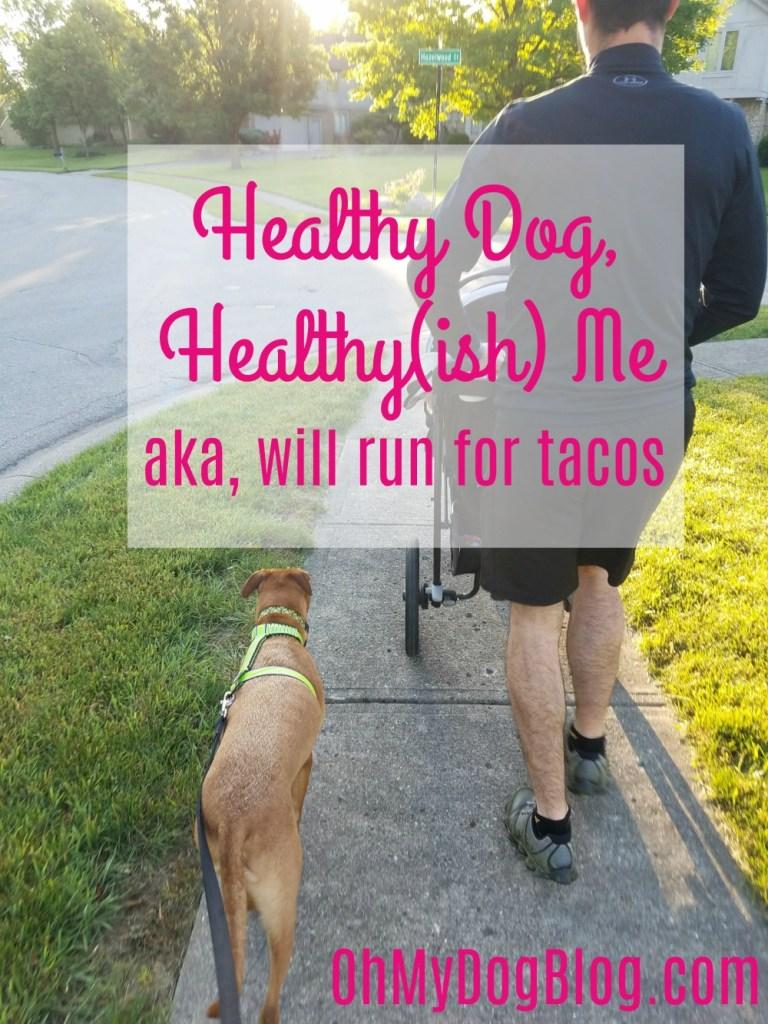 Healthy Dog Healthy Me