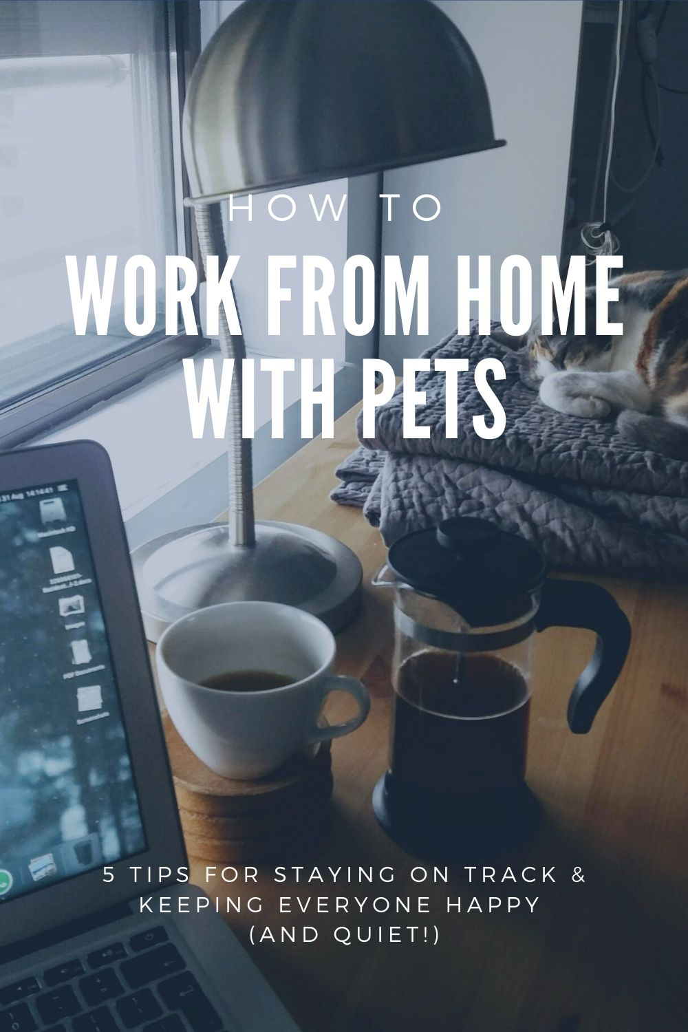 How to work from home with pets