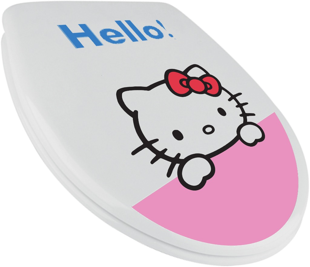 hello kitty potty chair baby that moves bathroom accessories