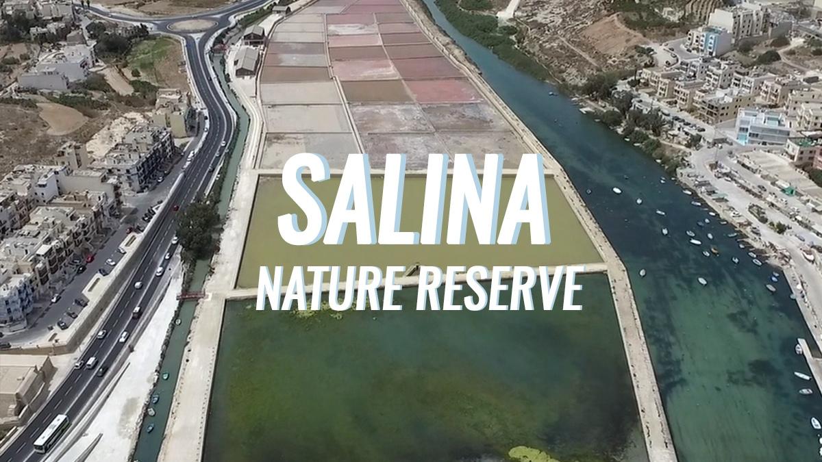 Nature Reserve Series: Salina