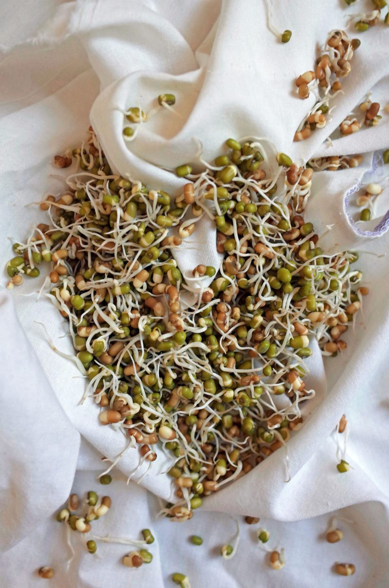 Mixed sprouted whole moong and moth beans on a crumpled white cloth