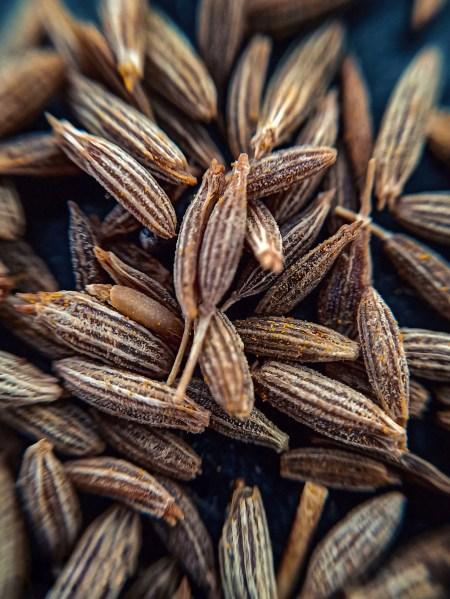 Close up detail shot of cumin seeds