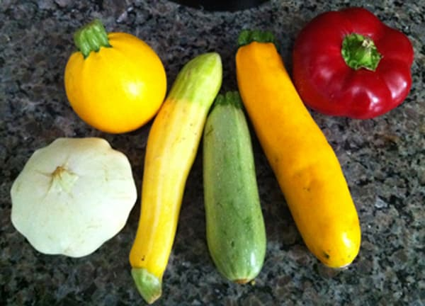 Different Varieties of Zucchini and Summer Squash