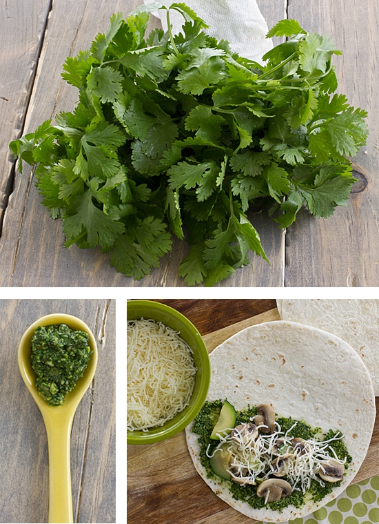 Cilantro Pesto & Quesadilla Assembly