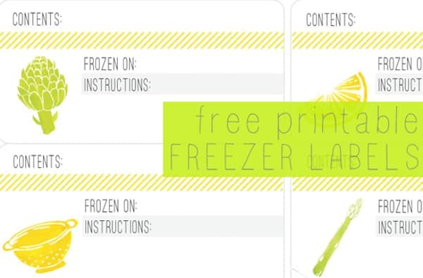 photo relating to Printable Freezer Labels referred to as Totally free Printable Freezer Labels For All Your Freezing Specifications!