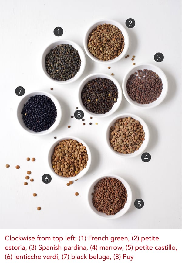 Varieties of Lentils from The Essential Good Food Guide