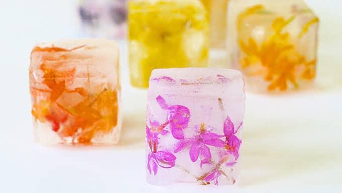 vegan ice cubes
