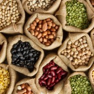 A Guide to Legumes