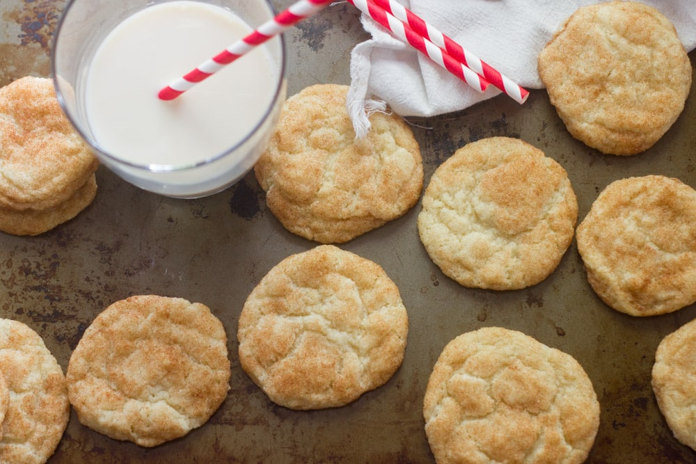 Easy vegan snickerdoodles recipes