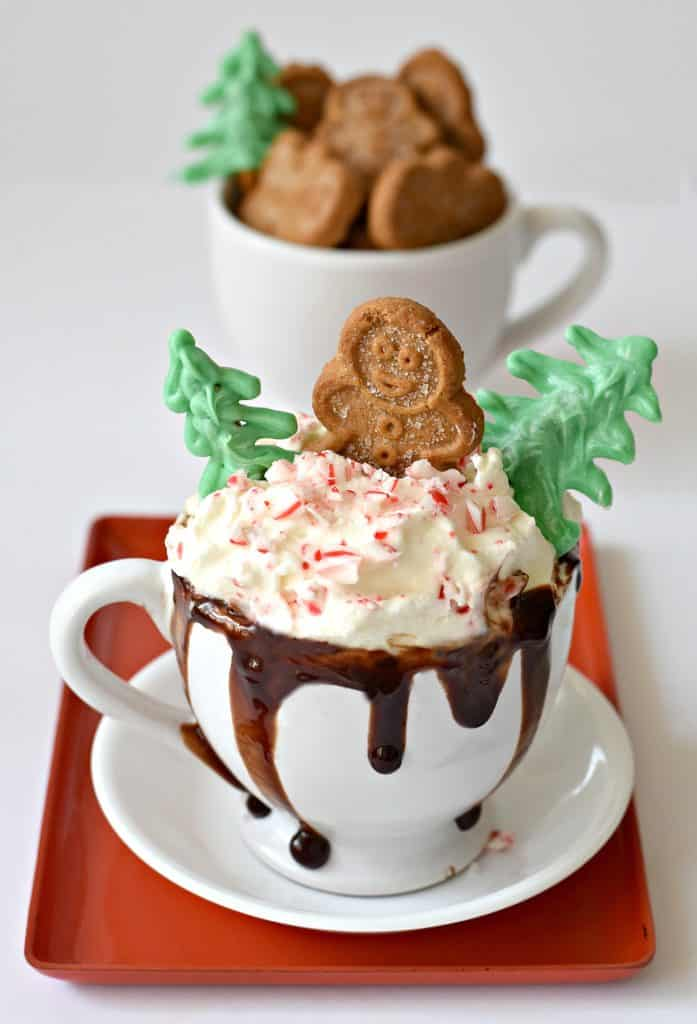 11 Cozy Coffee Drinks You Need This Fall: Chocolate Peppermint Tea Latte