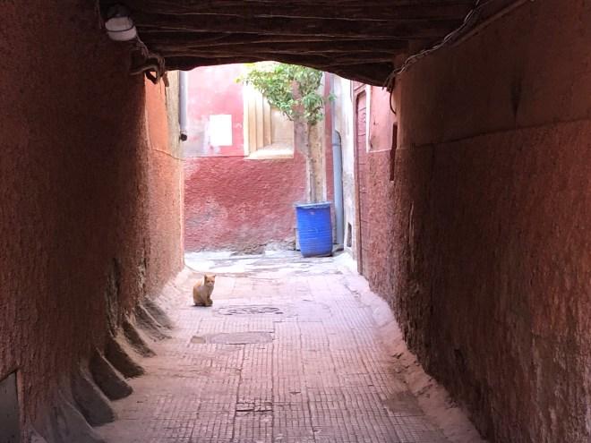 Medina_Marrakesch