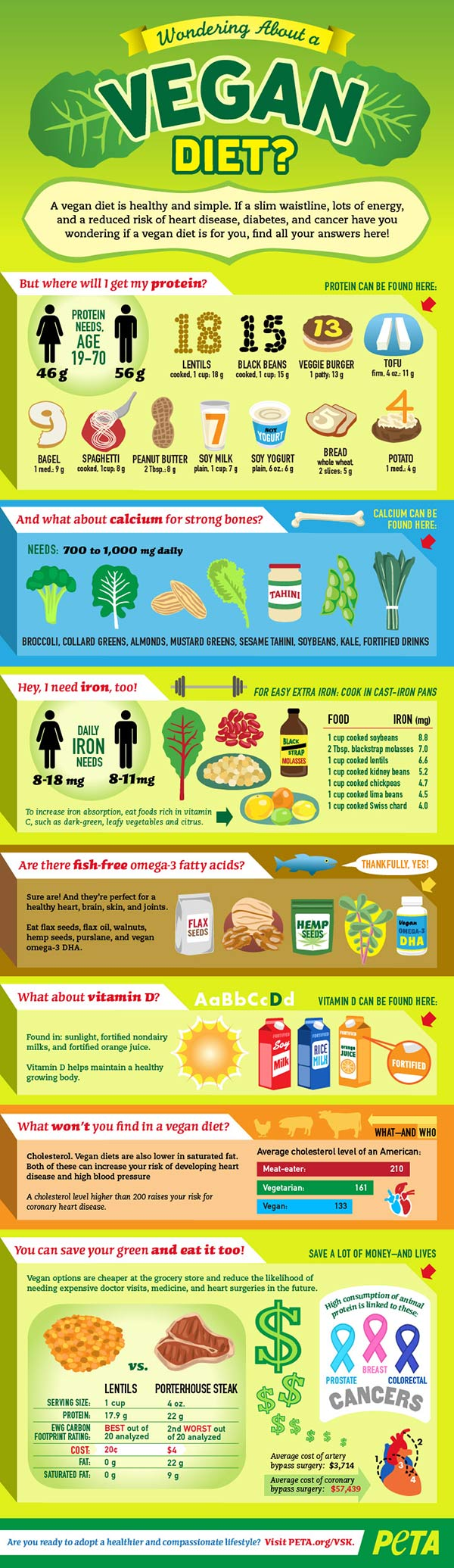 Converting to Vegan diet infographic