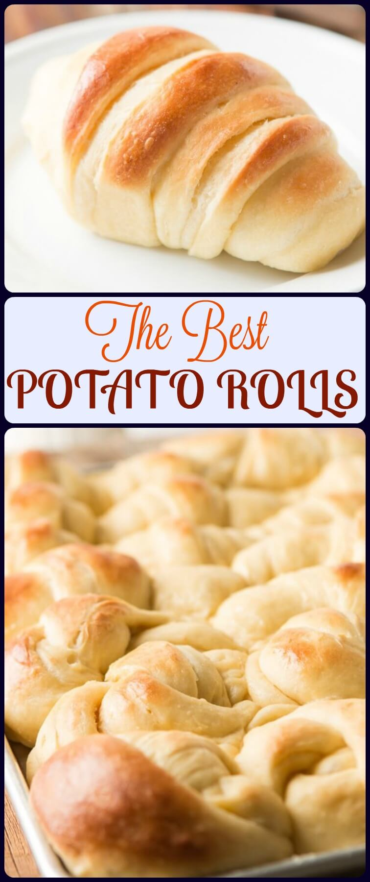 These potato rolls don't require any kneading and are hands down the best rolls we've ever had. Our number one most requested recipe. ohsweetbasil.com