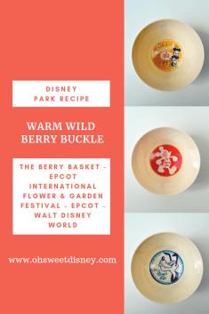 disney park recipe-20