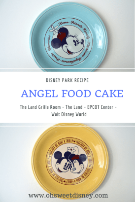 Disney Park Recipe-24